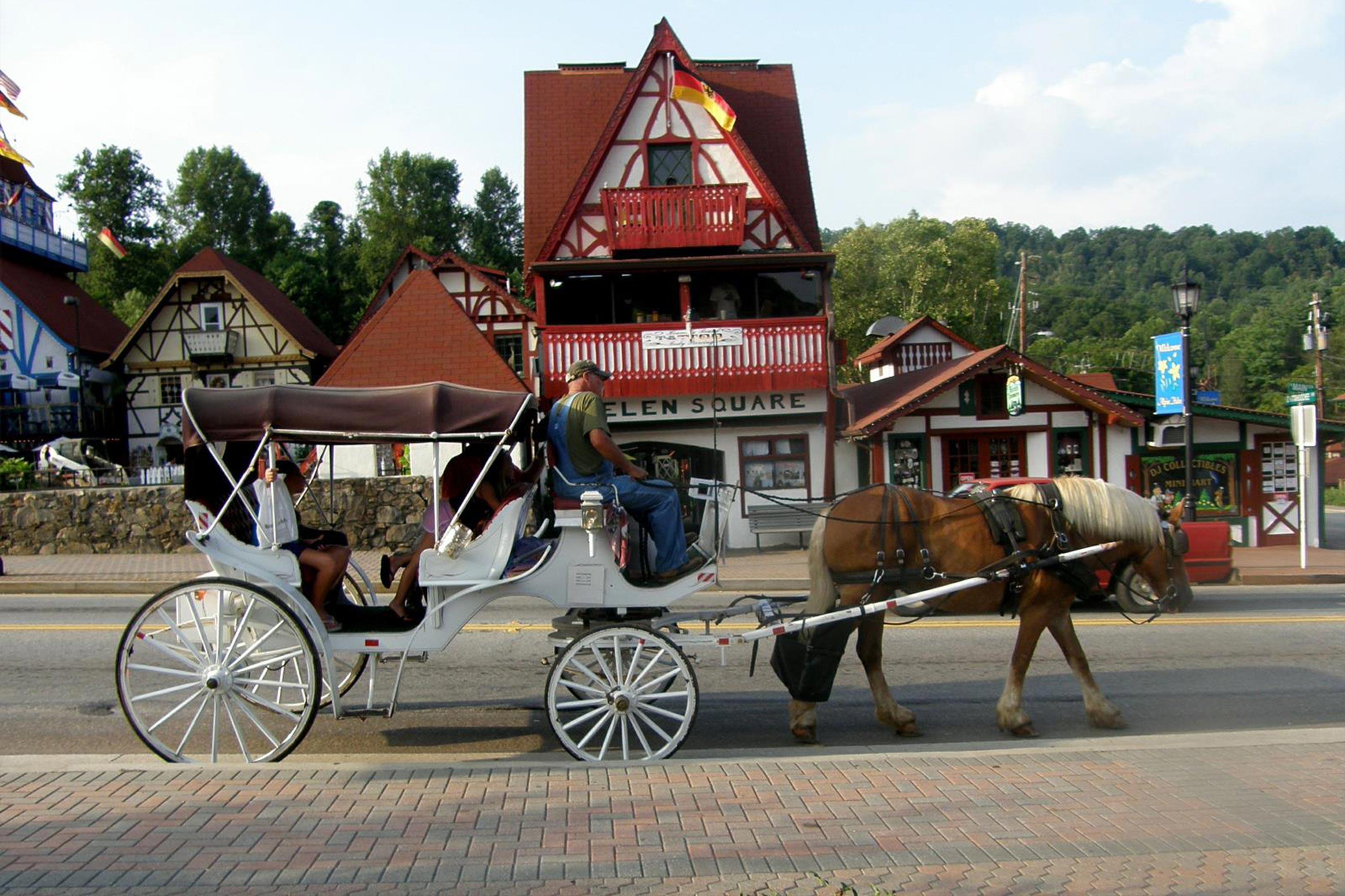 horse and buggy carriage rides